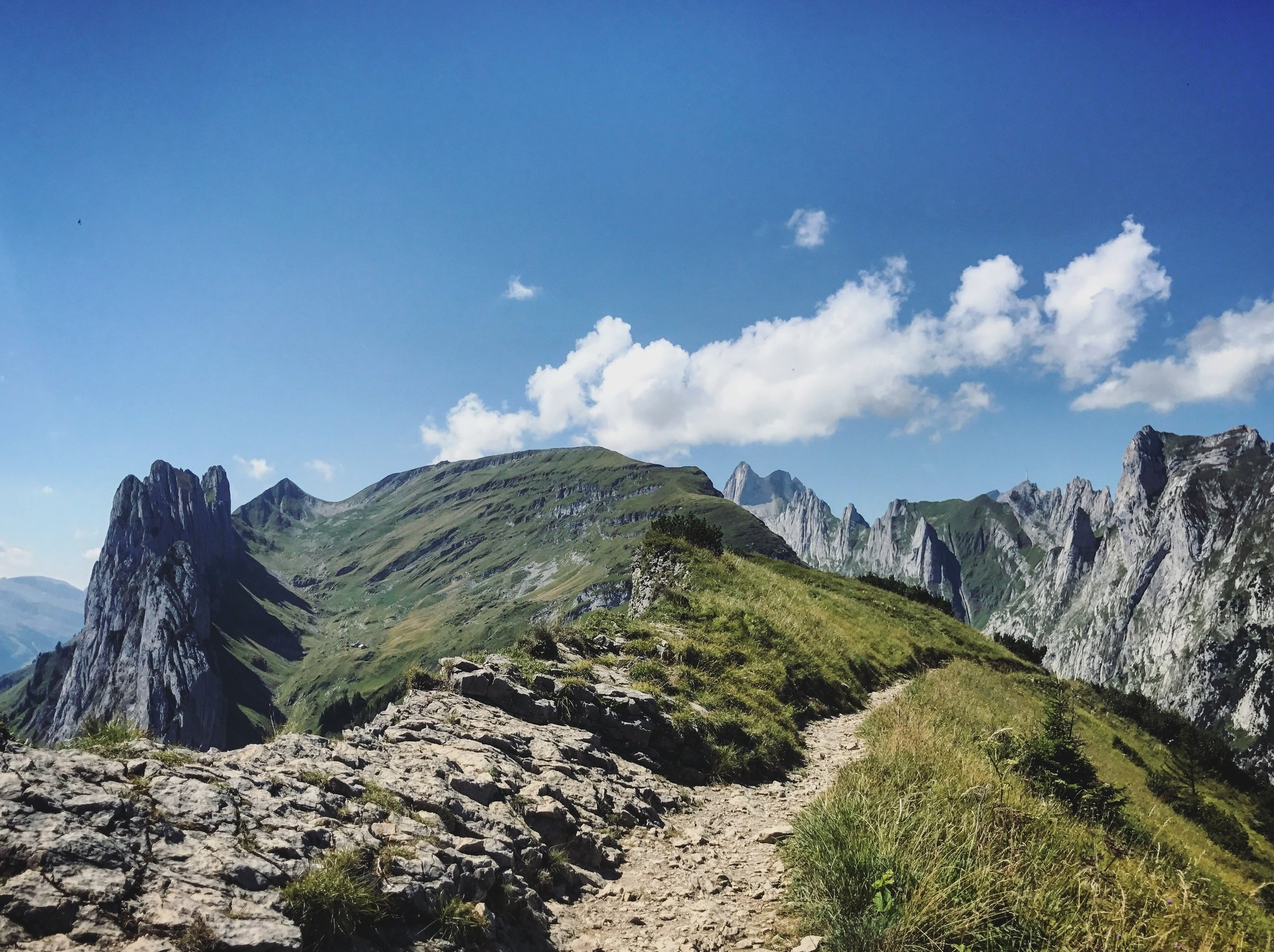 MiFID II Risk Profiles: Is it like hiking in the Alpine mountain trails?